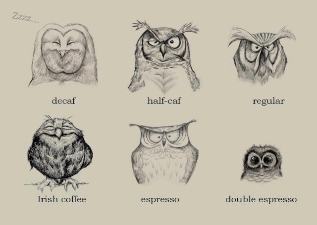 Les images choc et marrantes - Page 31 Cafe10