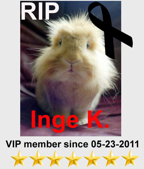 We have a Member MIA Inge_k10