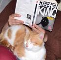[Stephen King] Simetierre Filoue10