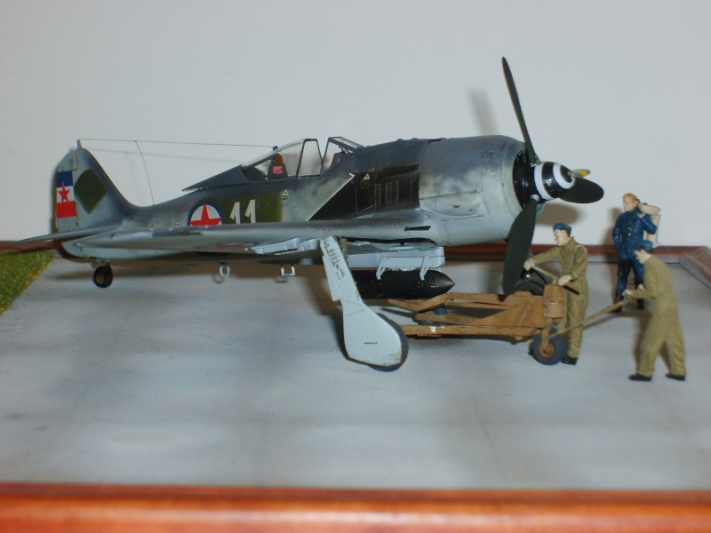FW 190 F8 Partisans Yougoslaves S6001525