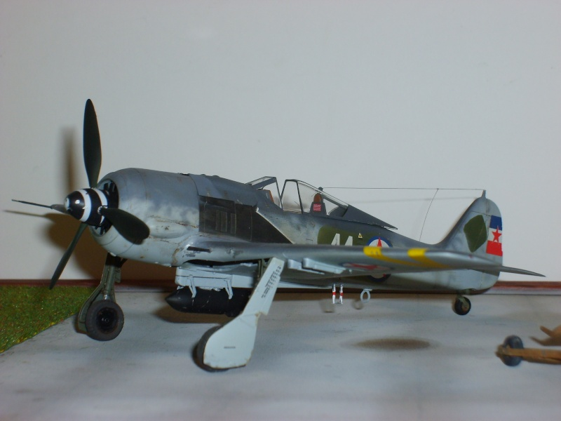 FW 190 F8 Partisans Yougoslaves S6001529