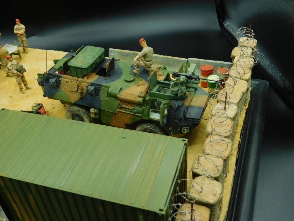 VAB valorisé 1/35 ( Heller+Blast models) - Page 6 Dscn2445