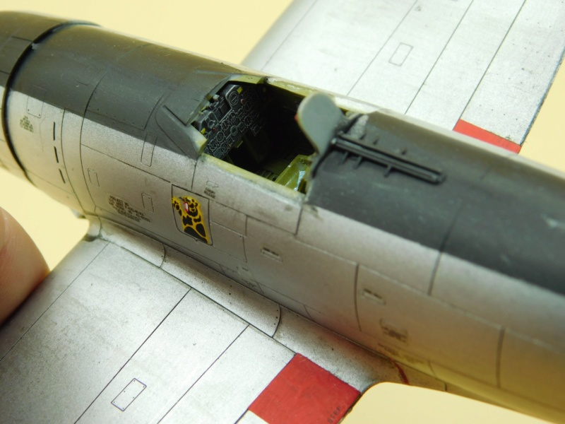 Hasegawa- P47D-30 Dscn2836