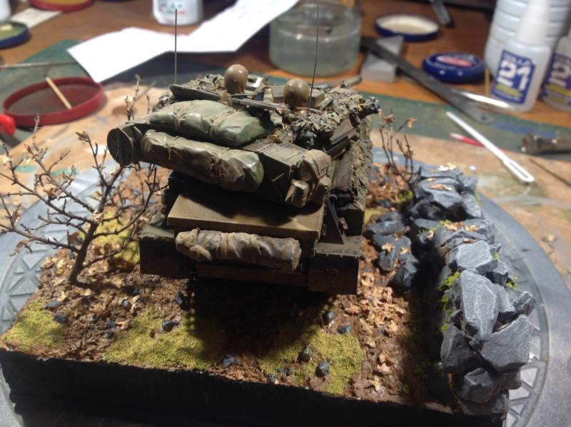 Scorpion en attente d'un diorama - Page 2 Img_0245