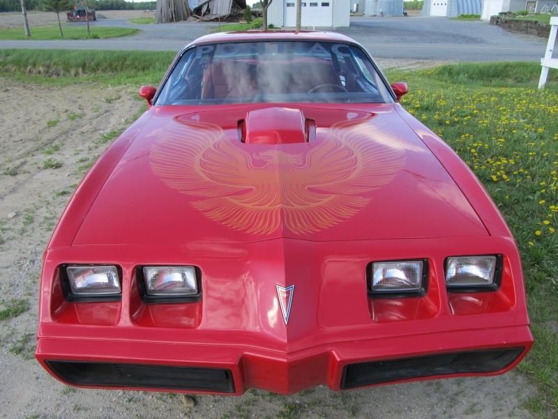 Pontiac Trans-Am 1981...à vendre!! Mai_2020
