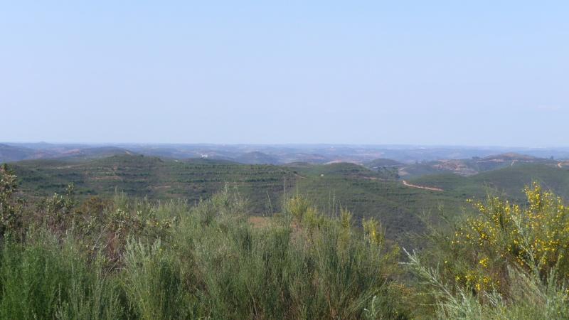 Serra e Praia, no mesmo dia - Algarve P1020311