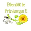 ***PHOTOS CARTES PAQUES-PRINTEMPS !!!*** - Page 2 Biento10
