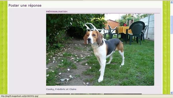 [Astuce] Insérer une image à l'aide d'ImageShack Image_22