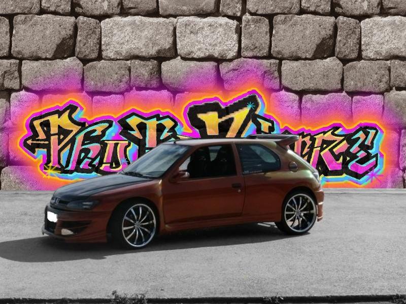 306 MAXI CARBONE BY SEB AUTO - Page 2 Maxi_g10