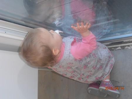 Enfants, grossesse, bibous et photos - Page 67 P4140010