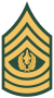 Sergeant Major Chief