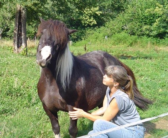 ARTHUR & AKIM - ONC poneys présumés nés en 1989 - adoptés en août 2009 par kalkita  Tuur_t10