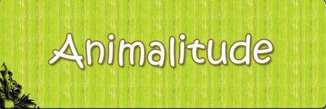 [FORUM] Animalitude - Un petit pas pour l'Homme, un grand pas pour les Animaux Image_10