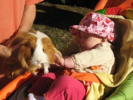 Bébé et animaux. Img_9319
