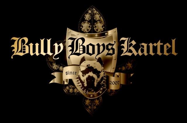 Salut fan de Mini-Bull Logo_b10
