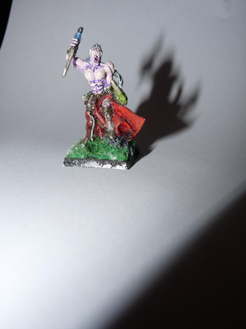 Jeu de role - figurines - artwork et gn P1000013