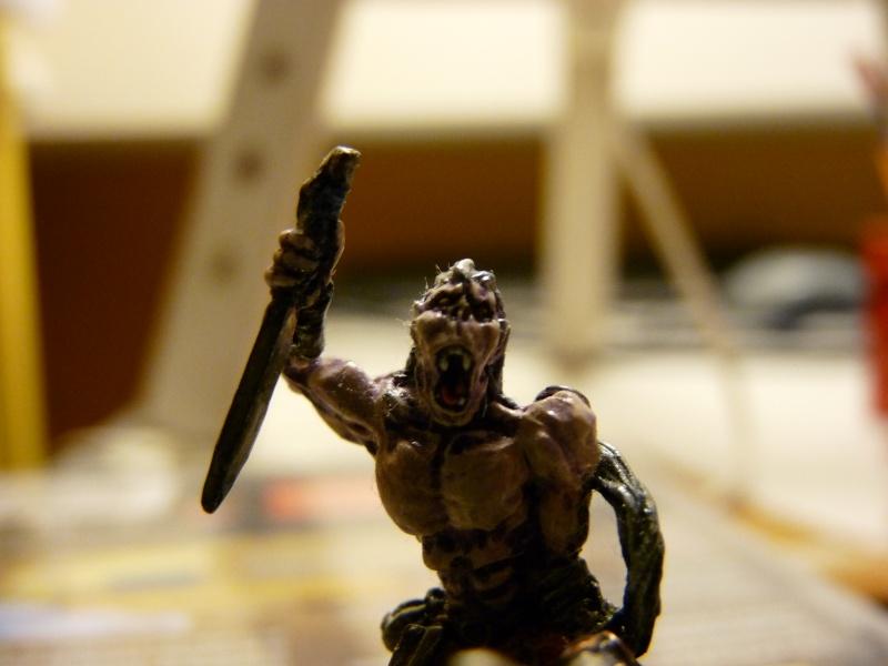 Jeu de role - figurines - artwork et gn P1000015