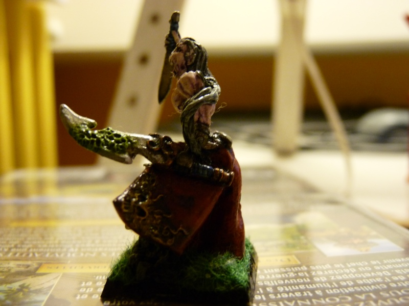 Jeu de role - figurines - artwork et gn P1000016