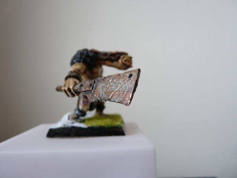 Jeu de role - figurines - artwork et gn P1000025