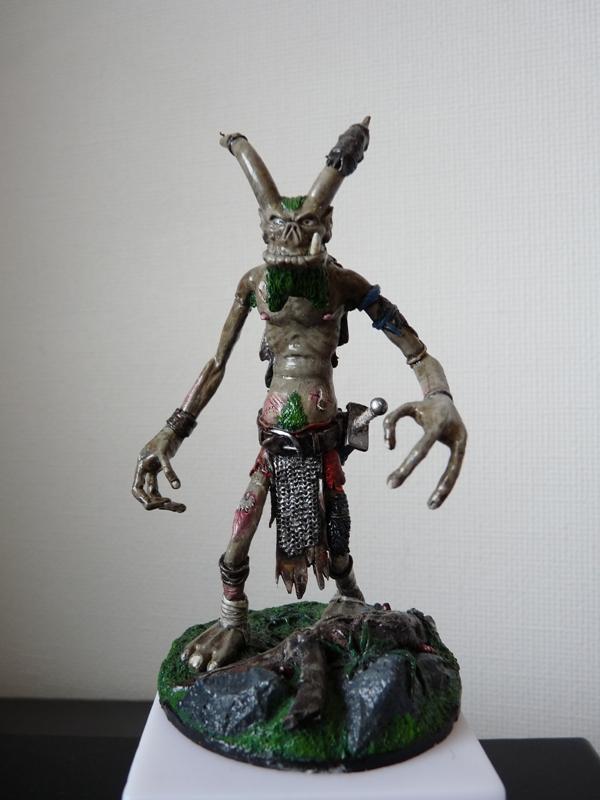 Jeu de role - figurines - artwork et gn P1000030