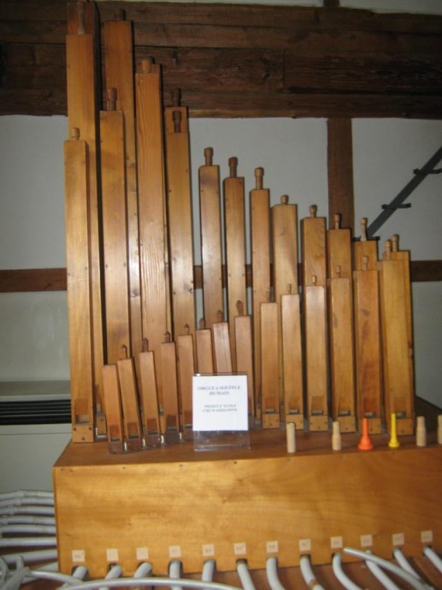 Orgues et Flûtes du Monde avec le P'tit dim Img_1618