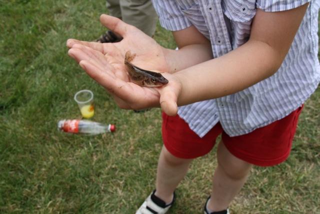 Pêche pour les enfants avec l'AAPPMA le 27 juin 2009 Img_2712