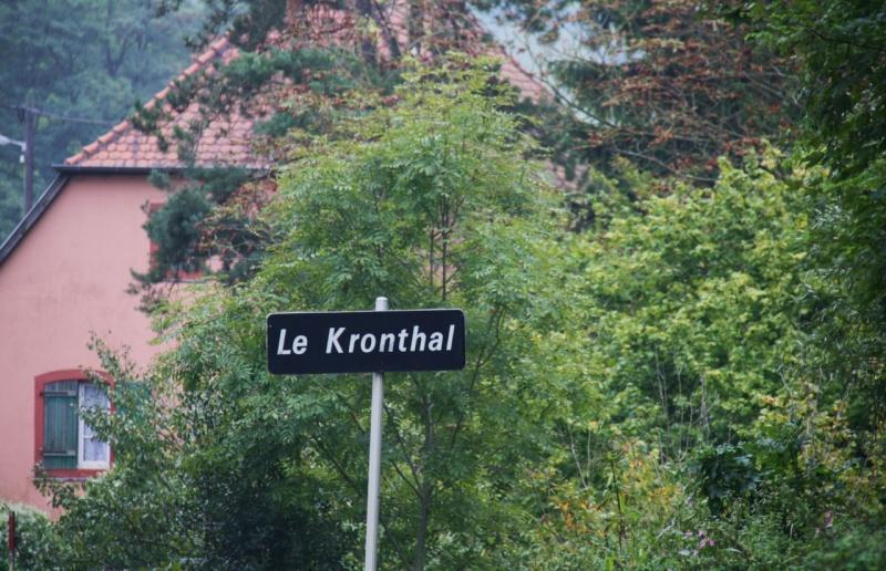 Le Grès du Kronthal Img_4918