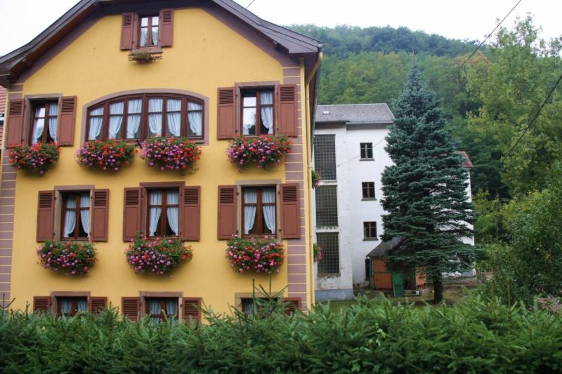 Le Moulin du Kronthal Img_5014