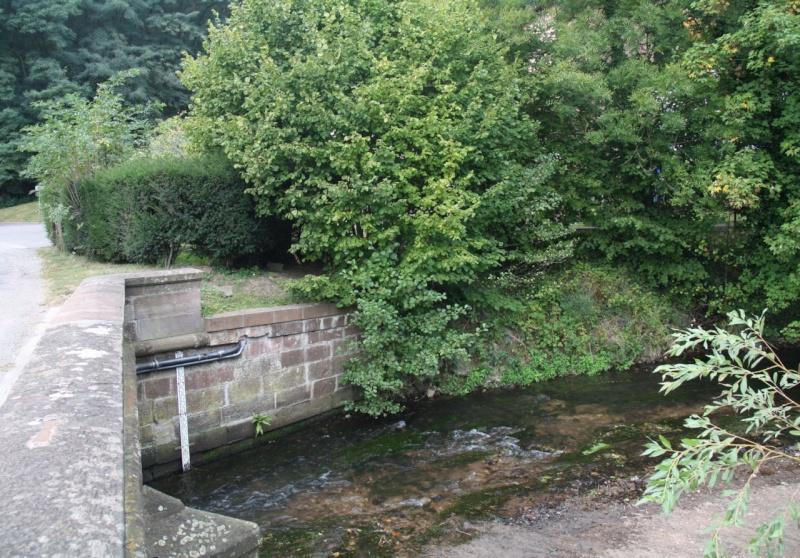 La Mossig , notre rivière Img_5038