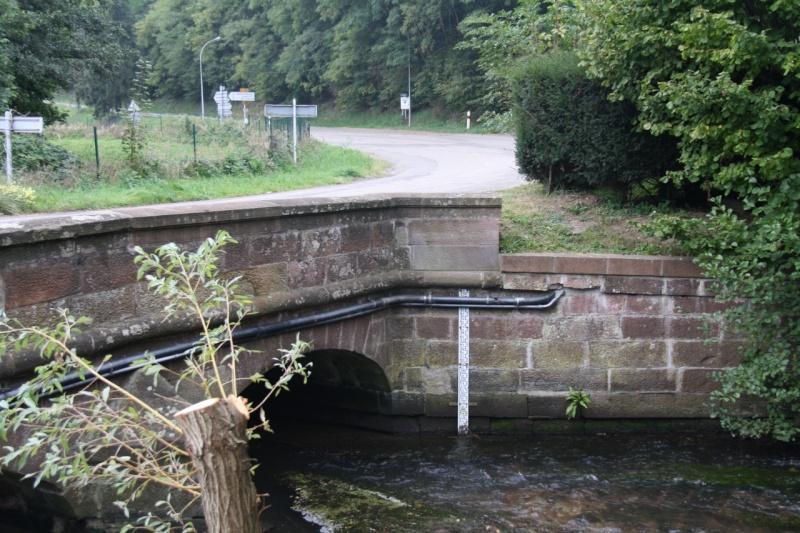La Mossig , notre rivière Img_5041