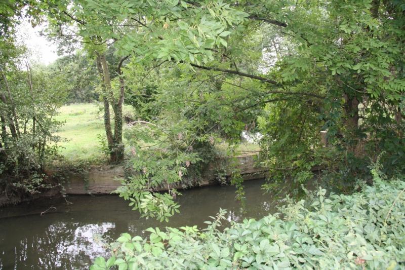 La Mossig , notre rivière Img_5048