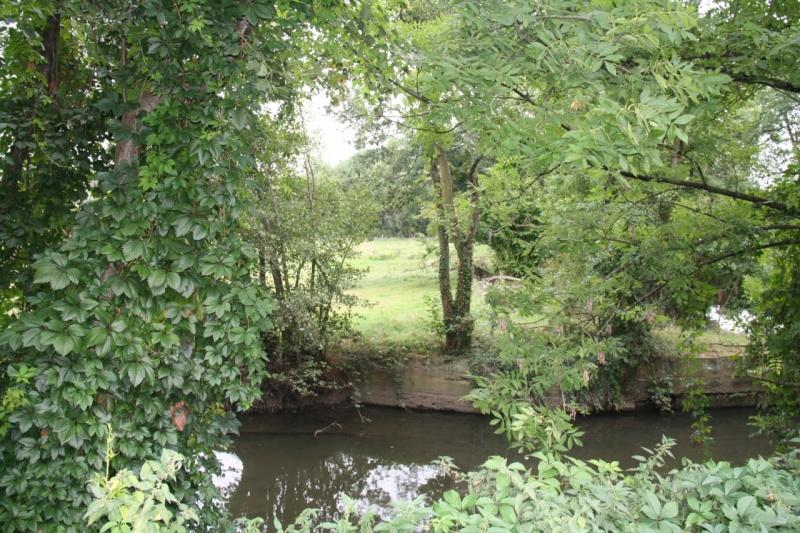 La Mossig , notre rivière Img_5049