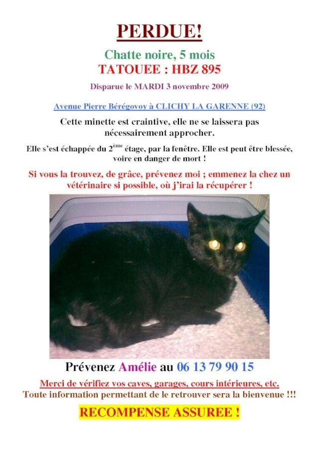 Petite chatte perdue à Clichy la Garenne (92) ! Perdue10