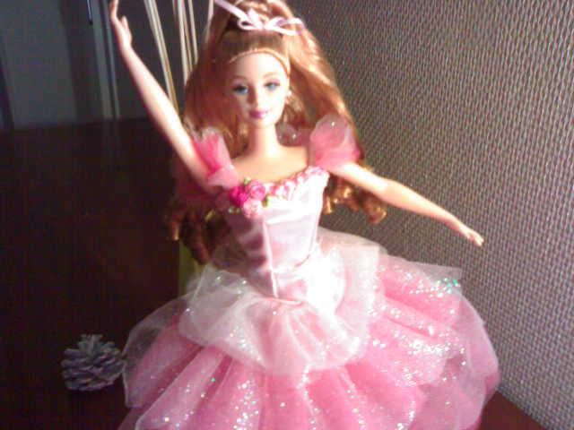 Ma Collection de Princesses Barbie 27122010