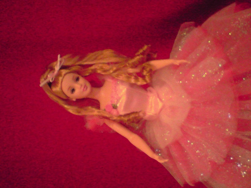 Ma Collection de Princesses Barbie Fgvb10