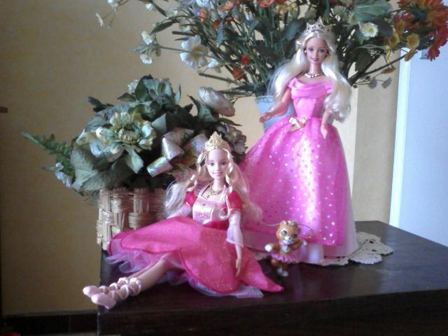 Ma Collection de Princesses Barbie Photo030
