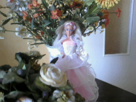 Ma Collection de Princesses Barbie Photo041
