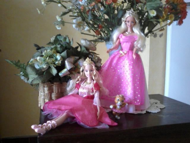 Ma Collection de Princesses Barbie Photo050