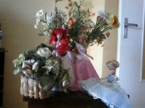 Ma collection des princesses Disney Photo097