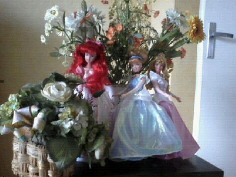 Ma collection des princesses Disney Photo101