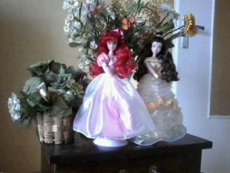 Ma collection des princesses Disney Photo102