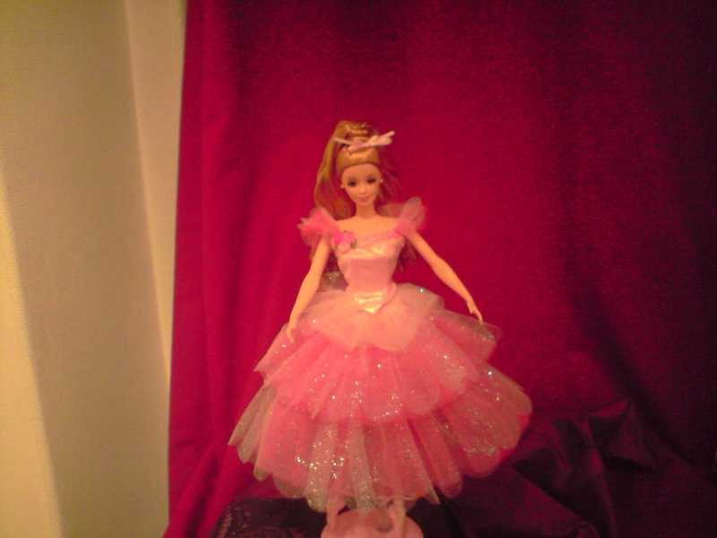 Ma Collection de Princesses Barbie Untitl38