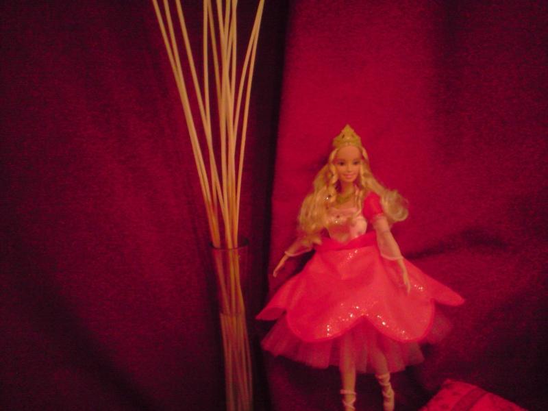 Ma Collection de Princesses Barbie Untitl40