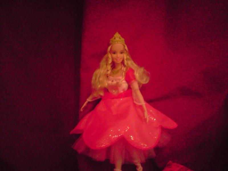 Ma Collection de Princesses Barbie Untitl41