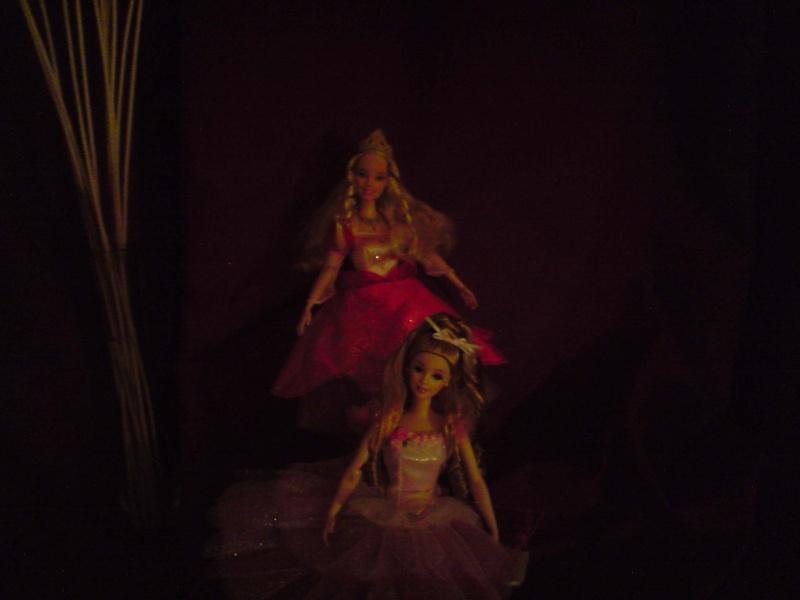 Ma Collection de Princesses Barbie Untitl74