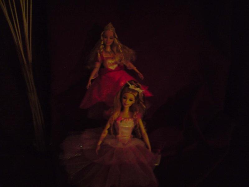 Ma Collection de Princesses Barbie Untitl77