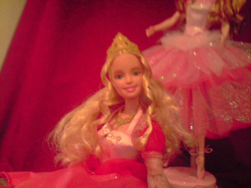 Ma Collection de Princesses Barbie Untitl78