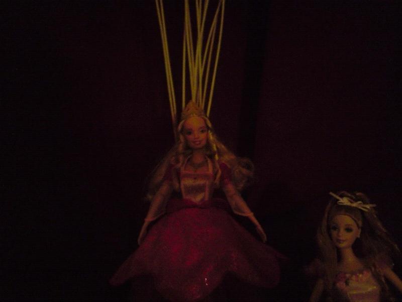 Ma Collection de Princesses Barbie Untitl82