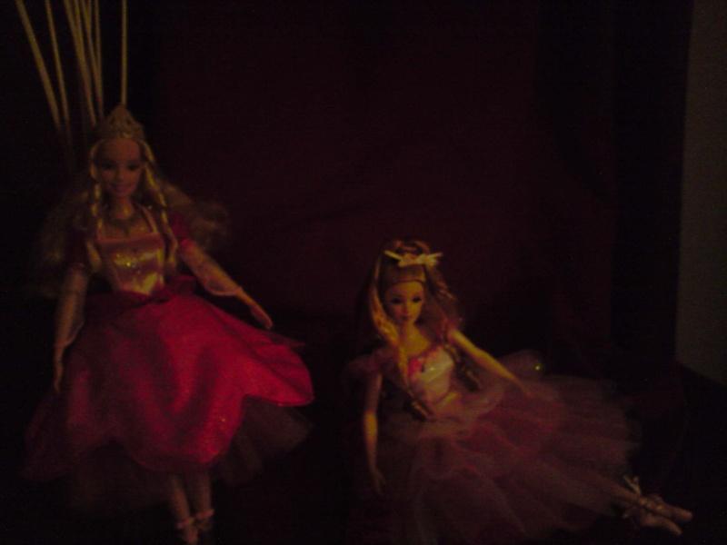 Ma Collection de Princesses Barbie Untitl83