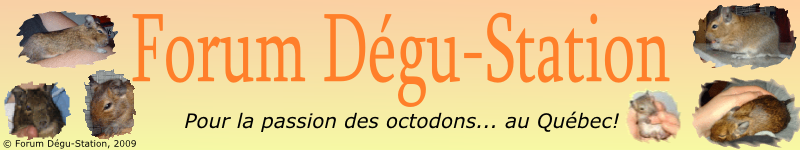 Dégu-Station
